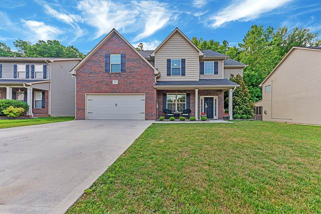 11638 Edison Rd, Knoxville, TN 37922 (#1121244) :: Billy Houston Group