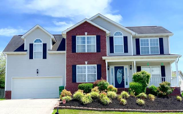 5726 Parasol Lane, Knoxville, TN 37924 (#1121671) :: Shannon Foster Boline Group