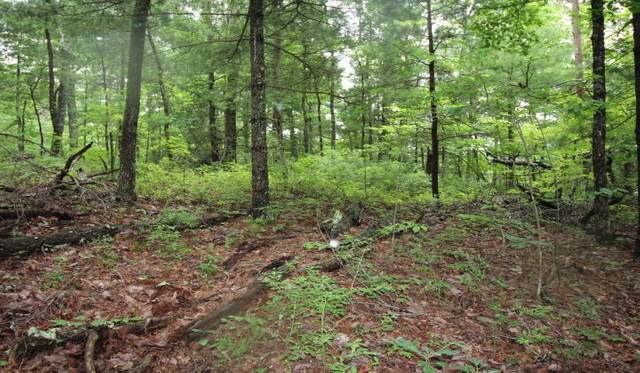 Lot 13 Little Mtn. Way, Townsend, TN 37882 (#1121734) :: Venture Real Estate Services, Inc.