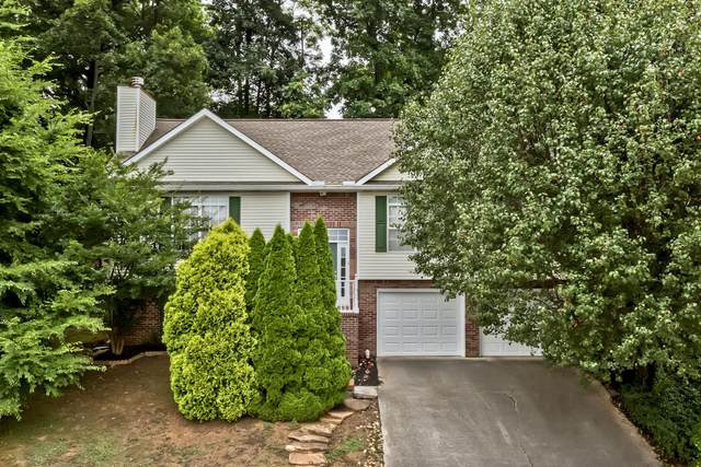 801 Dowry Lane, Knoxville, TN 37919 (#1121759) :: Billy Houston Group
