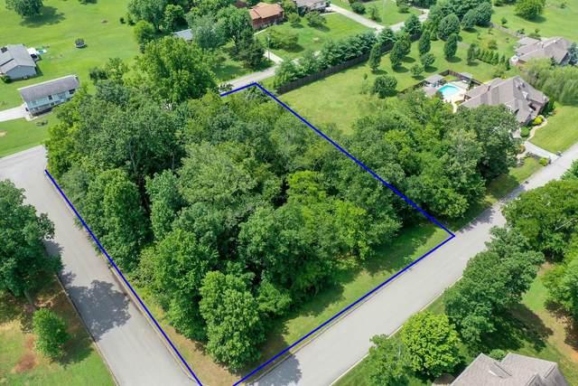 Lot 7 Davis Acres Drive, Maryville, TN 37804 (#1121804) :: Realty Executives Associates