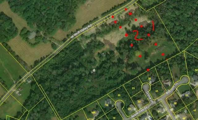 Wolf Valley Lot 2 Rd, Clinton, TN 37716 (#1121856) :: Tennessee Elite Realty