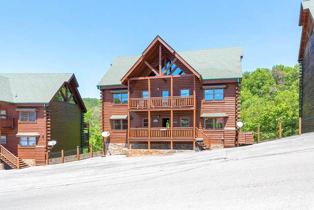 1056 Black Bear Cub Way, Sevierville, TN 37876 (#1121939) :: The Terrell Team