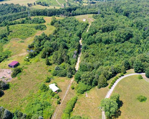 8678 Erie Rd, Sweetwater, TN 37874 (#1121949) :: Realty Executives Associates Main Street