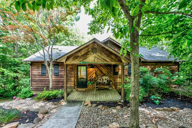 249 Broyles Drive, Caryville, TN 37714 (#1121969) :: Shannon Foster Boline Group