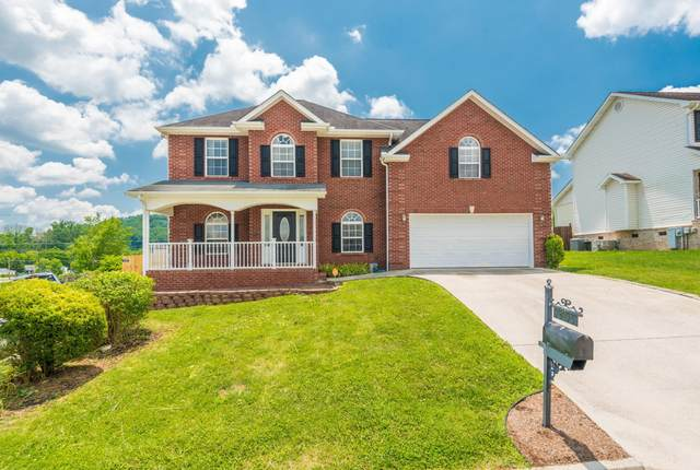 7405 Openview Lane, Corryton, TN 37721 (#1122067) :: Shannon Foster Boline Group