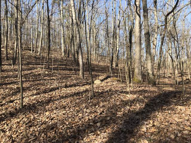 Lot 156 Willow Court #2, Spring City, TN 37381 (#1122165) :: Tennessee Elite Realty