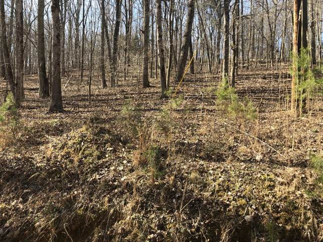 Lot 160 Maple Drive, Spring City, TN 37381 (#1122168) :: Tennessee Elite Realty