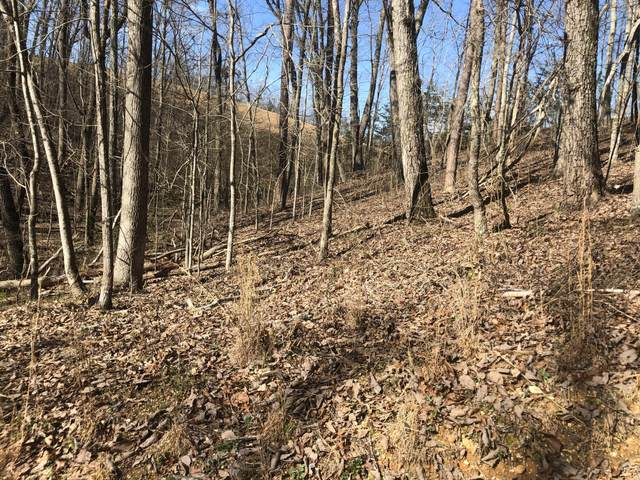 Lot 162 Maple Drive #2, Spring City, TN 37381 (#1122169) :: Tennessee Elite Realty