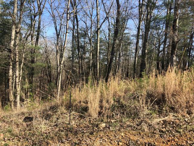 Lot 286 Maple Drive #2, Spring City, TN 37381 (#1122173) :: Venture Real Estate Services, Inc.