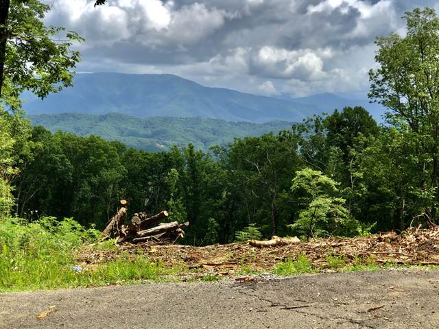 Lot 148 Mountaineer Trl, Sevierville, TN 37862 (#1122220) :: Catrina Foster Group