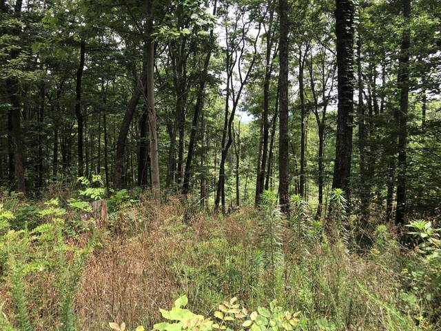 Lot 149 Mountaineer Trl, Sevierville, TN 37862 (#1122222) :: Catrina Foster Group