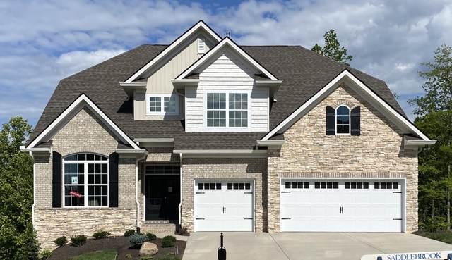 Lot 45 12722 Taurus Lane Lane, Knoxville, TN 37922 (#1122250) :: Billy Houston Group