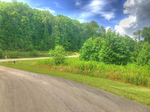 Lot 369 Thief Neck View Drive, Rockwood, TN 37854 (#1122253) :: Catrina Foster Group