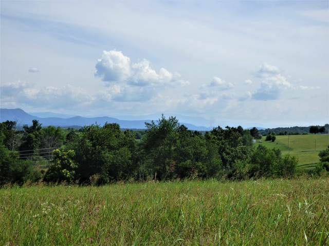 Lot 2 Falcon Rd, White Pine, TN 37890 (#1122345) :: The Cook Team