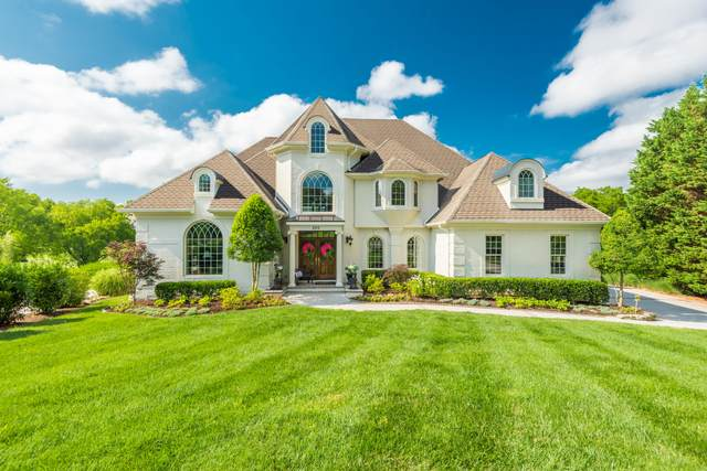 205 Pebble Beach Point, Knoxville, TN 37934 (#1122380) :: Billy Houston Group