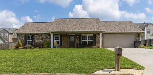 823 Evelyn Drive, Loudon, TN 37774 (#1122394) :: Shannon Foster Boline Group