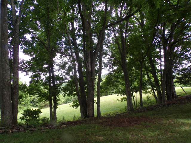 1442 Brooks, Sneedville, TN 37869 (#1122425) :: Billy Houston Group