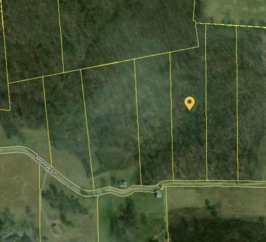 Monroe Lane, Sharps Chapel, TN 37866 (#1122835) :: Billy Houston Group