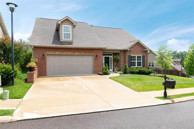 4238 Rare Earth Drive, Knoxville, TN 37938 (#1122867) :: Shannon Foster Boline Group