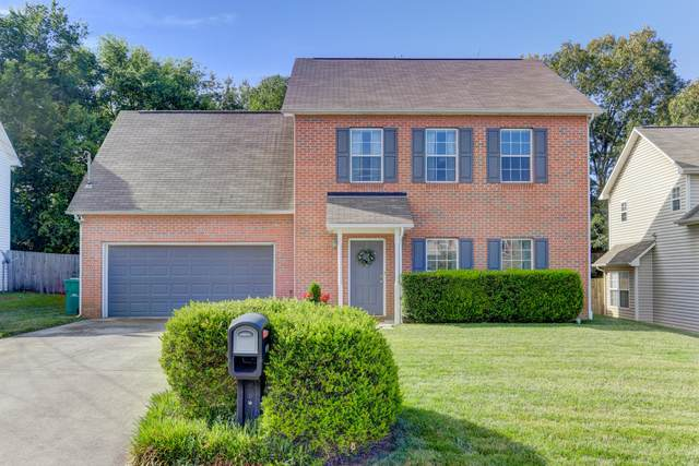 9826 Crested Butte Lane, Knoxville, TN 37922 (#1122924) :: Billy Houston Group