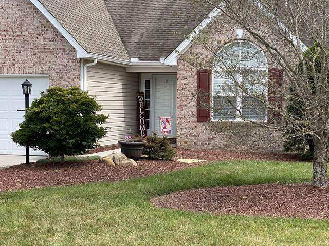 1572 Mandrell Drive Drive, Knoxville, TN 37918 (#1123013) :: Shannon Foster Boline Group