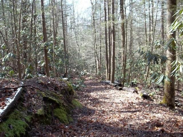 Off Holder Cemetery Rd, Tellico Plains, TN 37385 (#1123049) :: Adam Wilson Realty