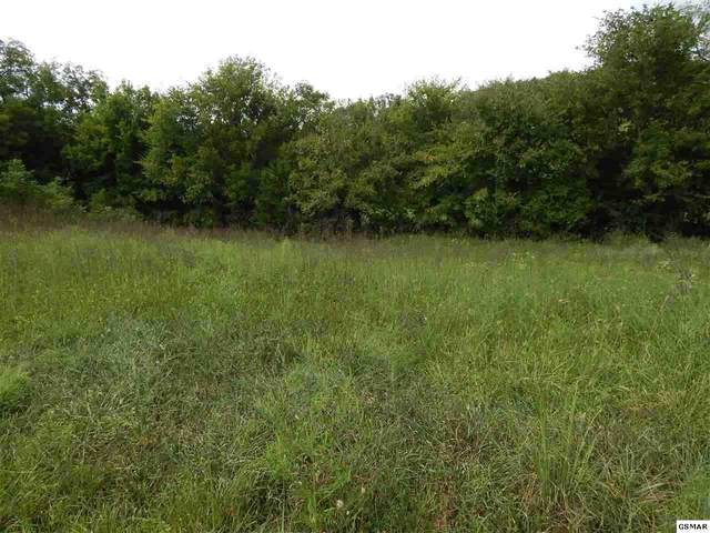 Ally Ln - Lot 23, Sevierville, TN 37876 (#1123153) :: Venture Real Estate Services, Inc.