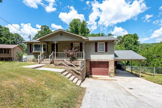 185 Cedar Circle, Powell, TN 37849 (#1123183) :: Catrina Foster Group