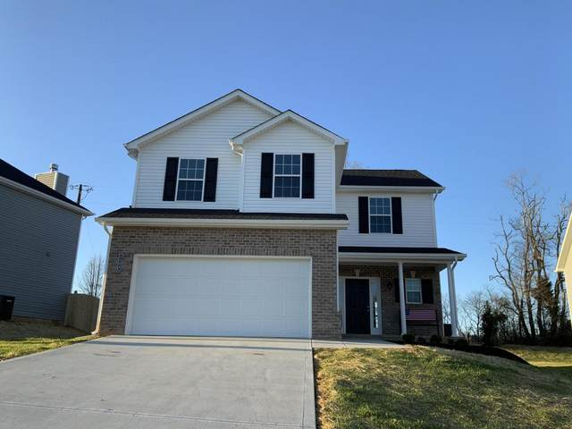 1111 Sky Top Lane, Powell, TN 37849 (#1123234) :: Realty Executives Associates