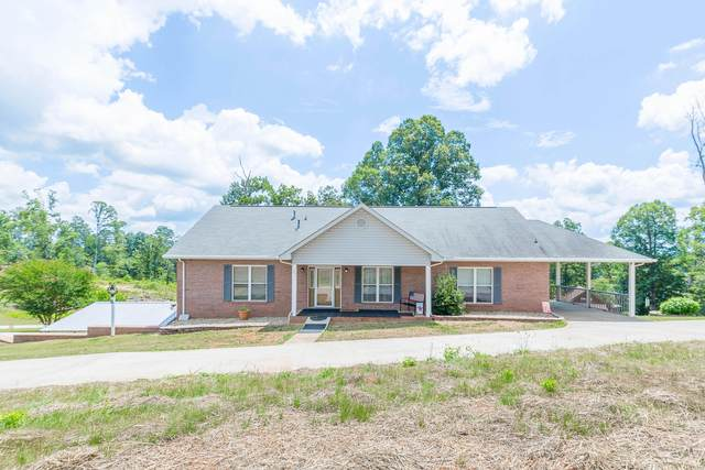 241 Harbor View Lane, Maryville, TN 37801 (#1123348) :: Realty Executives