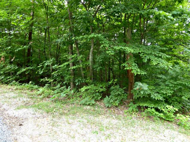 Lot 1235 Rustic Drive, Baneberry, TN 37890 (#1123413) :: Adam Wilson Realty