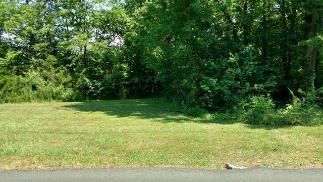 Lot 2104 Back Nine Drive, White Pine, TN 37890 (#1123545) :: The Cook Team