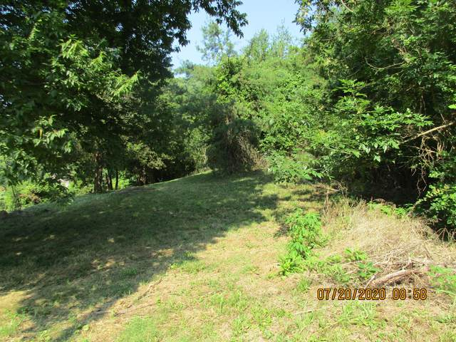 Saddle Way, Sevierville, TN 37876 (#1123878) :: The Terrell Team