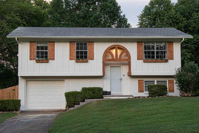 6704 Ellesmere Drive, Knoxville, TN 37921 (#1123912) :: Realty Executives