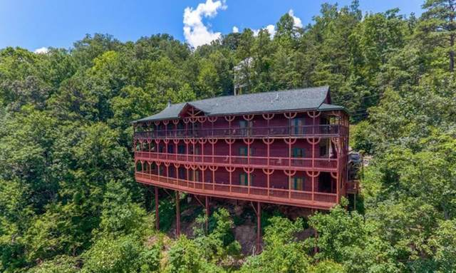 365 Smoky View Rd, Gatlinburg, TN 37738 (#1123929) :: Billy Houston Group