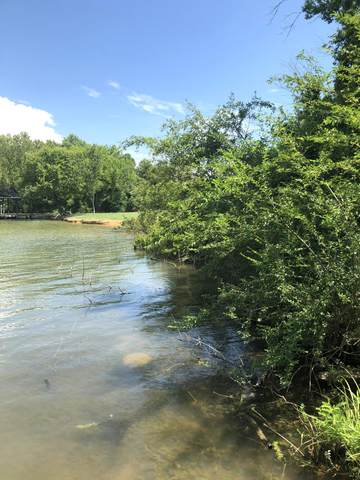 Cherokee Circle, Ten Mile, TN 37880 (#1124014) :: Cindy Kraus Group | Realty Executives Associates