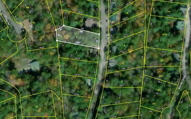 Lot 5 Cutter Gap Rd, Townsend, TN 37882 (#1124083) :: The Sands Group