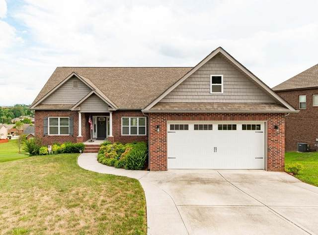 689 Shenandoah Drive, Lenoir City, TN 37771 (#1124104) :: Exit Real Estate Professionals Network