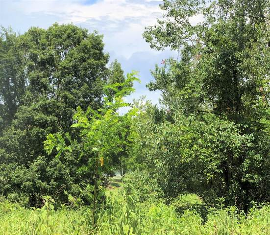 Cherokee Circle, Ten Mile, TN 37880 (#1124124) :: Cindy Kraus Group | Realty Executives Associates