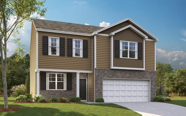 578 Reserve Way, Dandridge, TN 37725 (#1124148) :: Venture Real Estate Services, Inc.
