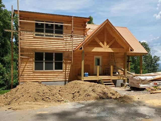 3303 Pine Peak Way, Sevierville, TN 37862 (#1124171) :: Venture Real Estate Services, Inc.