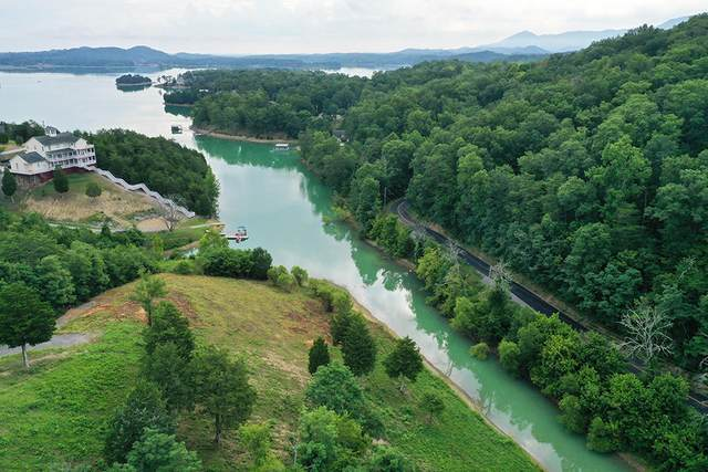 Lot 14 Harbor Point Drive, Sevierville, TN 37876 (#1124223) :: Catrina Foster Group