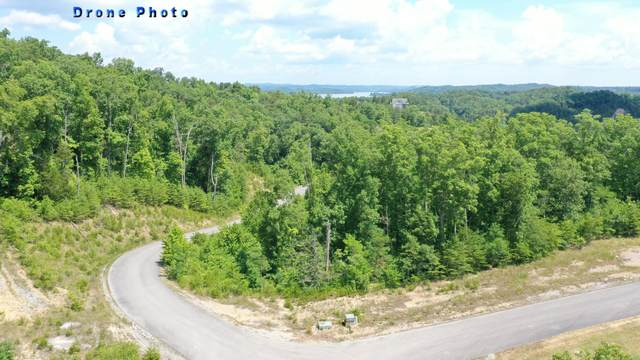 Bay View Point, Sevierville, TN 37876 (#1124332) :: A+ Team