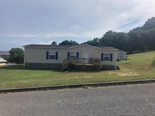 195 Tasha Lane, Tazewell, TN 37879 (#1124376) :: Realty Executives Associates Main Street