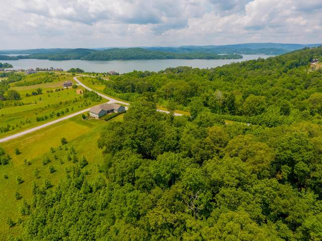 Water View Drive, Rockwood, TN 37854 (#1124586) :: Billy Houston Group