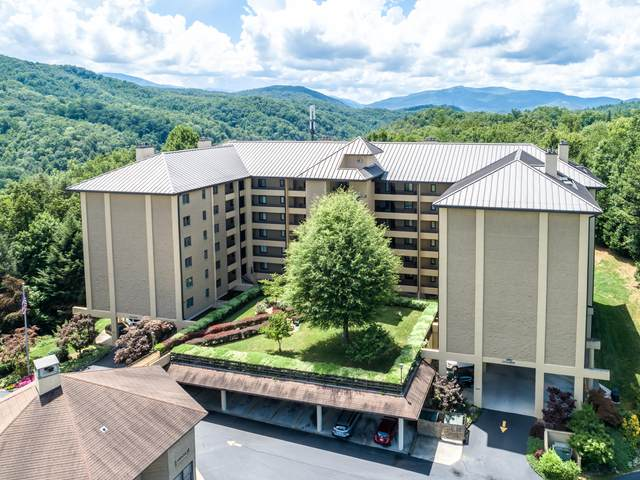1704 Hidden Hills Rd #108, Gatlinburg, TN 37738 (#1124618) :: Shannon Foster Boline Group