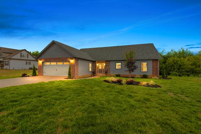 408 Cape Lookout, Loudon, TN 37774 (#1124819) :: Catrina Foster Group