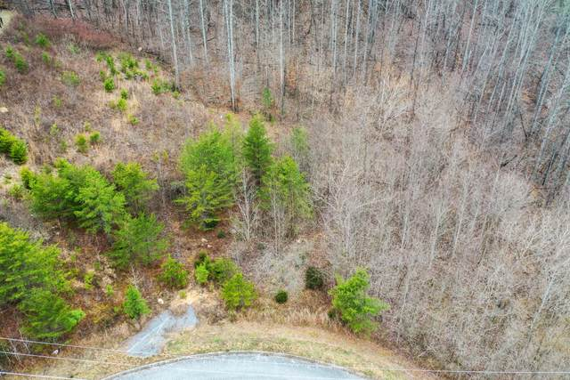 Red Oak Lane, Caryville, TN 37714 (#1124973) :: Tennessee Elite Realty