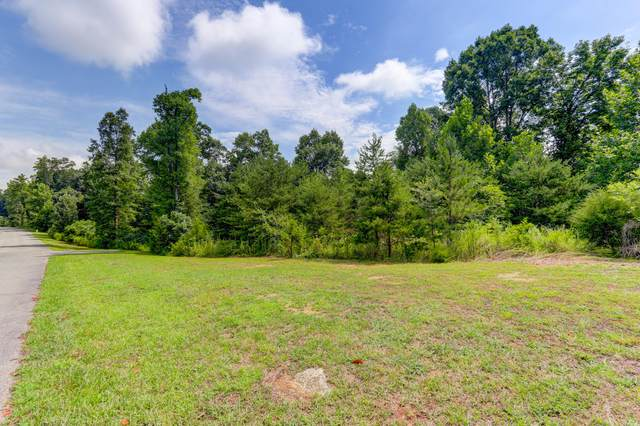 Highland Woods Way, Powell, TN 37849 (#1125100) :: Billy Houston Group